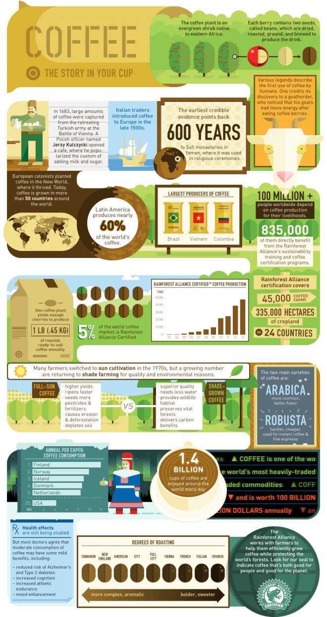 Coffee infograhpic Rainforest Alliance